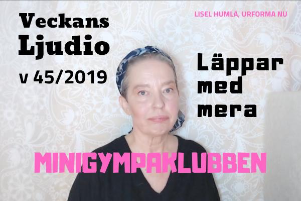 Bild till Ljudion v 45/2019